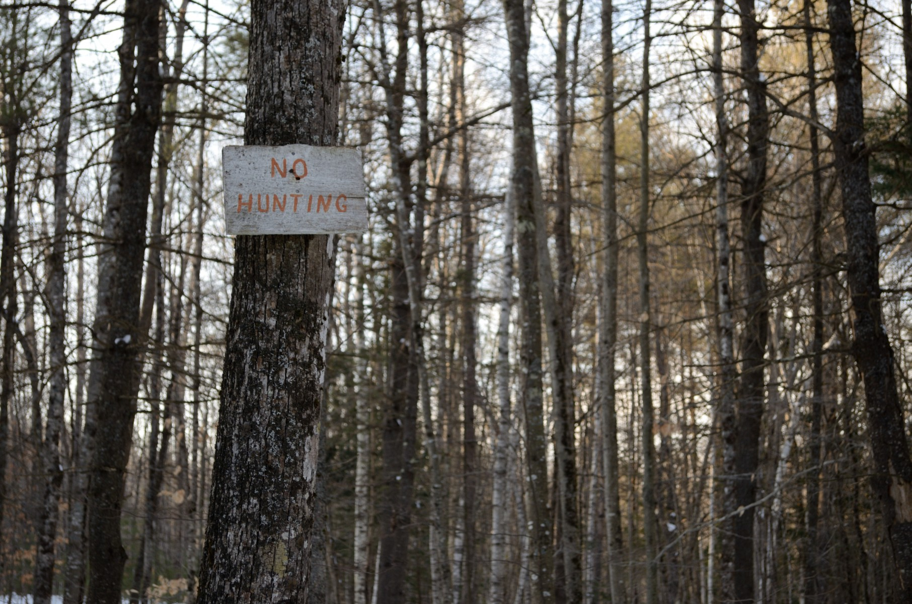no hunting sign by ryan fish